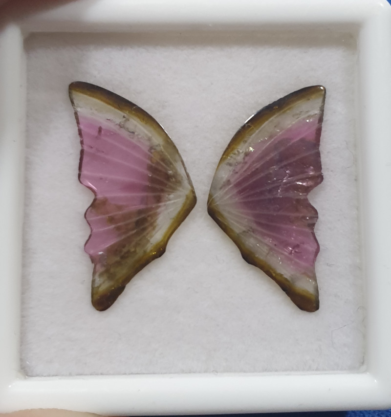 Carved Watermelon Tourmaline Butterfly 22x11.2mm 5.9ct- Green And Pink(SKU