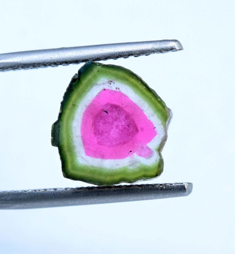 7.10 cts Watermelon Tourmaline Slice