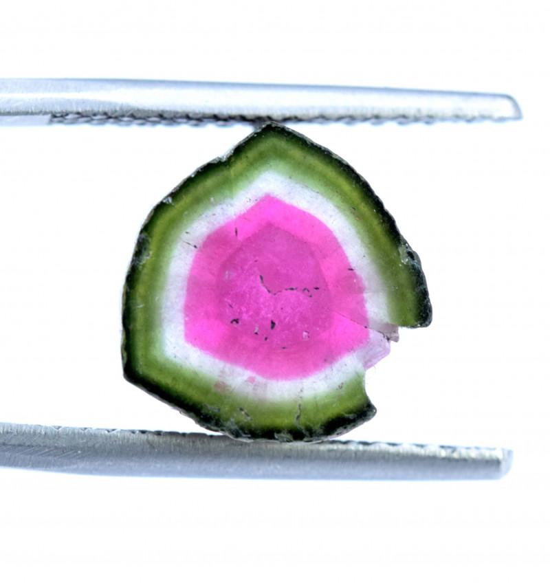8.65 cts Watermelon Tourmaline Slice