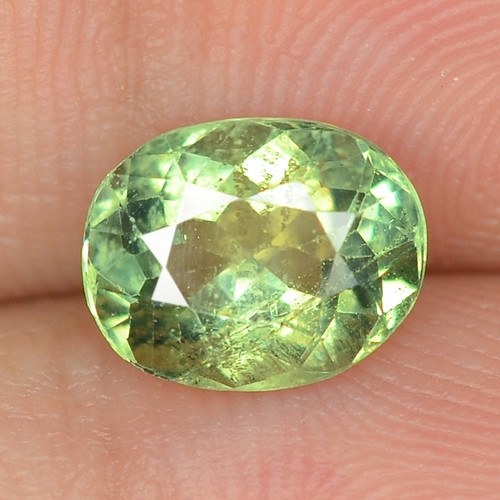 1.61 cts UNHEATED GREEN COLOR  NATURAL  APATITE LOOSE GEMSTONE