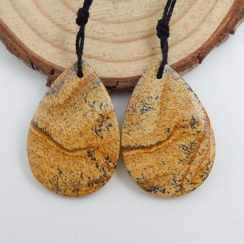 Picture Jasper earrings ,gemstone earrings ,healing stone C737