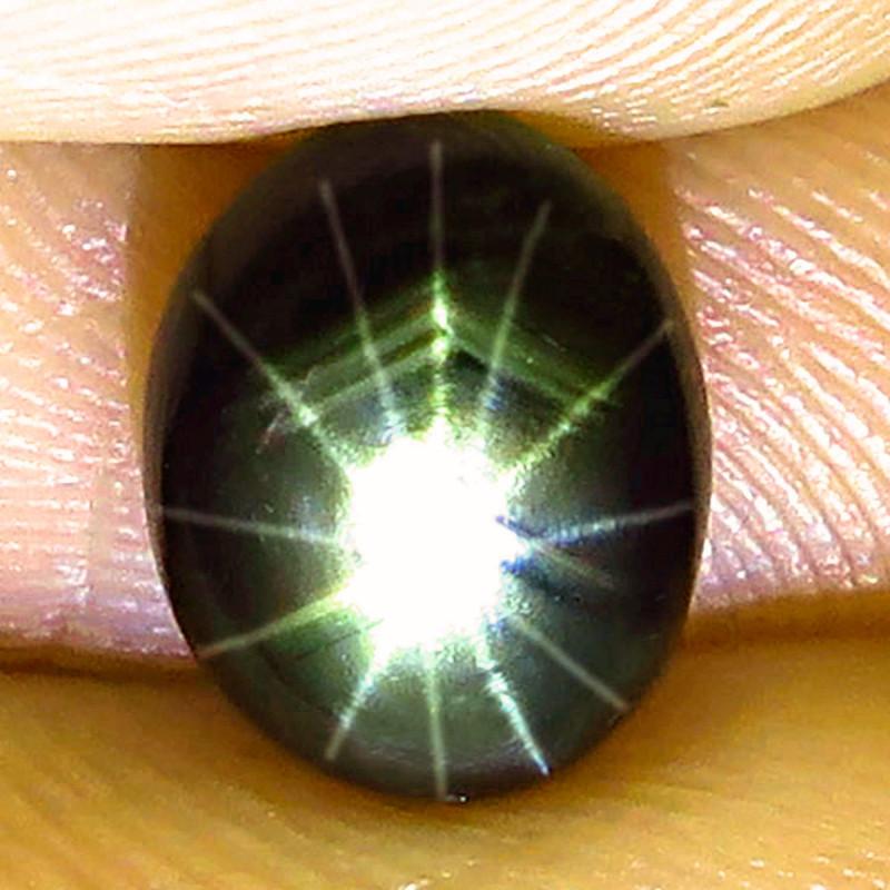 3.09 Carat Thailand 12 Ray Black Star Sapphire - Gorgeous