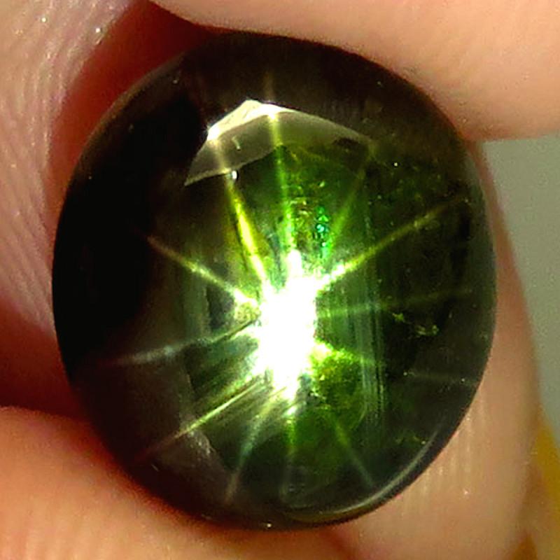 7.23 Carat 12 Ray Black Star Sapphire - Gorgeous