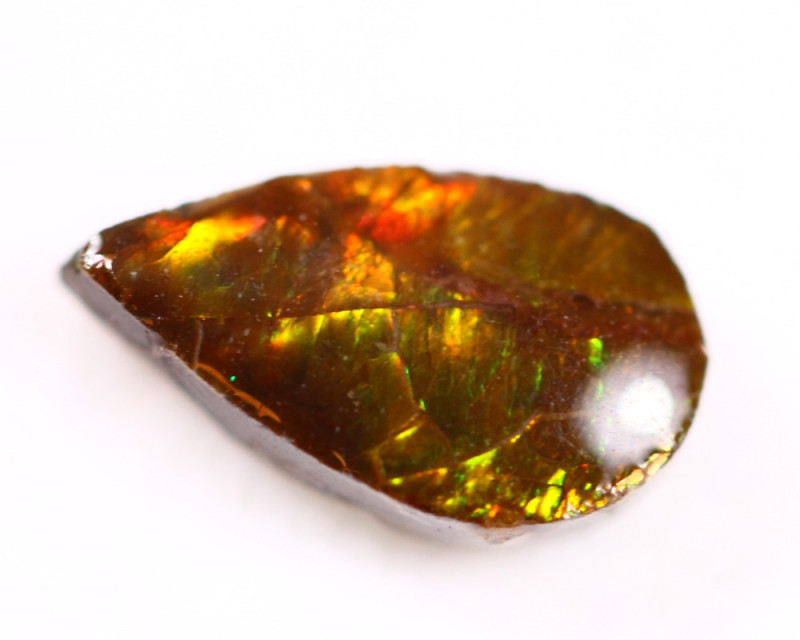 1.70ct Canadian Ammolite / Ammonite Lot D98