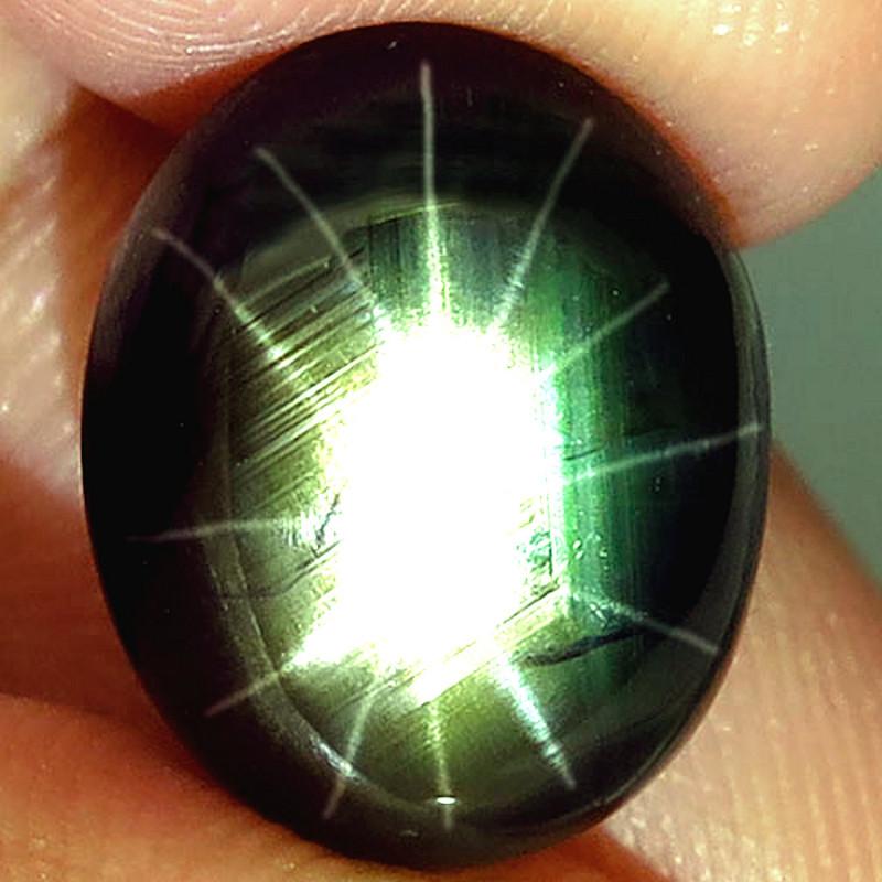 9.68 Carat Thailand Black Star Sapphire - Superb