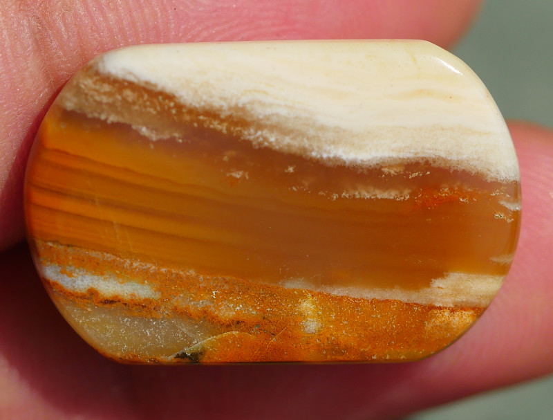 INDONESIAN PETRIFIED WOOD OPAL AA GRADE 19.15 CRT