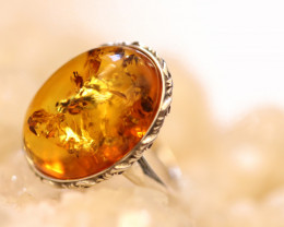 Natural Baltic Amber Sterling Silver Ring size 6 code GI 783