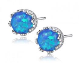 Silver 925 Quailty Classy Fashion Earrings  code CCC 1667