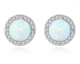 Silver 925 Quailty Classy Fashion Earrings  code CCC 1670