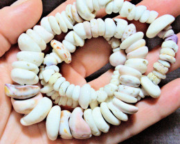 Handmade Authentic Hawaiian Puka Shell Necklace - Superb