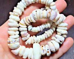 431.0 Carat Weight Colorful Authentic Hawaiian Puka Shell Lei Necklace 17 i