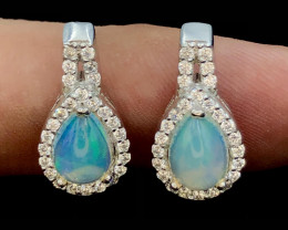 No~Reserve~Amazing~Opals~Attractive~Ear Rings~21.45 ct