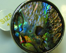 PAUA SHELL ELECTRO PLATED  SILVER RING SIZE 17