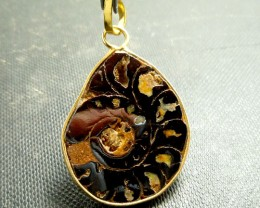 AMMONITE PENDANT 81.25 CARATS RT 867
