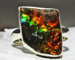 RING SIZE BRIGHT  CANADIAN AMMOLITE SILVER  RING  [SJ4184]