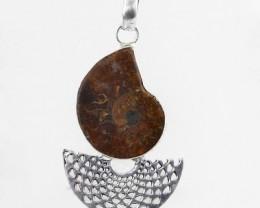 Natural 10.67 Gms Amazing Ammonite Pendant