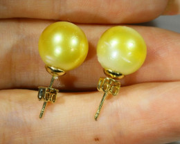 11 MM Golden Natural Pair Pearls SB 437