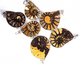 Ammonite Pendant parcel 6 pcs from Morocco WS351