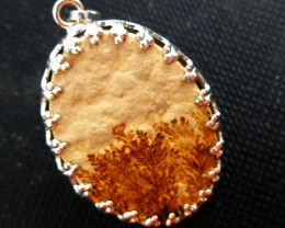 UNIQUE FERN LEAF FOSSIL PENDNAT 20.60 CTS RT 886