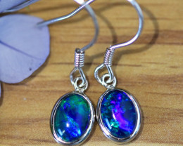 Cute fire triplet opals in stylish sheppard hook silver earrings SU 1489