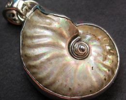 47.00CTS IRREDESENT AMMONITE PENDANT-FACTORY DIRECT [SJ1780]