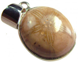 SEA URCHIN FOSSIL PENDANT 19.00 CTS [GT744 ]
