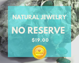 $19.00 No Reserve Jewelry Online Auctions