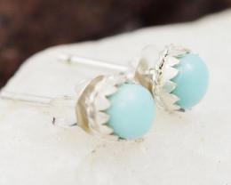 Cute Lamimar  Earrings AMB 901