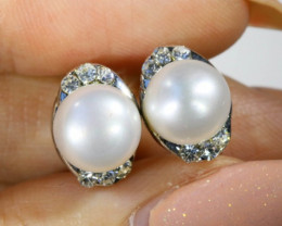 8x8 mmFresh water Pearl French clasp  Earring  AM 1046