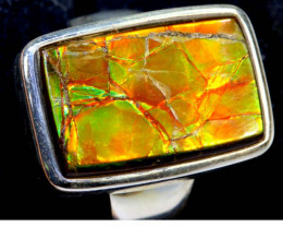 63.95 RING SIZE 8.5 BRIGHT AMMOLITE SILVER RING SG-2427