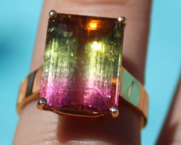 Certified Watermelon Tourmaline 10.65ct Solid 22K Yellow Gold Ring