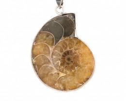 Ammonite  Fossil Pendant BR 331