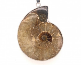 Ammonite Fossil Pendant BR 333