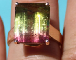 Certified Watermelon Tourmaline 12.55ct Solid 18K Yellow Gold Ring