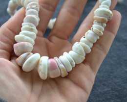 Handmade Large Shell Authentic Hawaiian Puka Shell Necklace - Superb