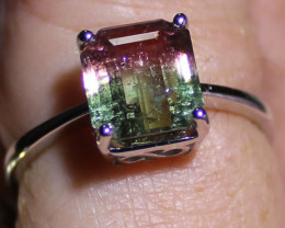 Watermelon Tourmaline 4.05ct Solid 18K White Gold Solitaire Ring,Natural,Un