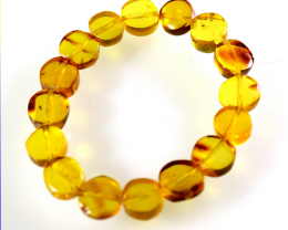 Dominican Natural Clear Yellow Coin Disc Amber Stretch Bracelet 6.5inch