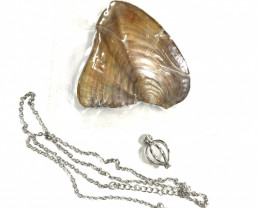 Dig open your own Oyster pearl with pendant BR 2495