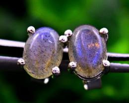 Stunning Genuine Blue Flash Labradorite Ear Studs / Earrings In Silver