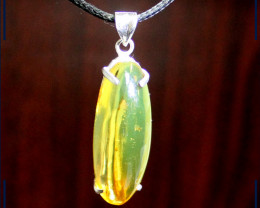 Biggest 2.1 inch Dominican Amber Fossil Flying Insect .925 Sterling Silver