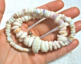 355.5 Carat Weight Colorful Authentic Hawaiian Puka Shell Necklace 18 inche