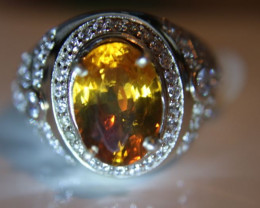 Madeira Citrine 3.05ct Platinum Finish Solid 925 Sterling Silver Ring     S