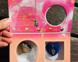 Gift box Shell with pendant necklace n Real Pearl-BR 2483