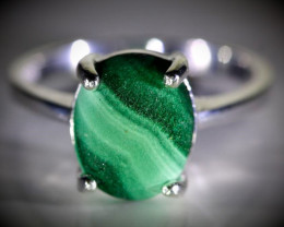 Malachite 5.05ct Platinum Finish Solid 925 Sterling Silver Ring