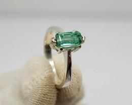 Natural Green Tourmaline13.70 Carats 925 Silver Ring I01