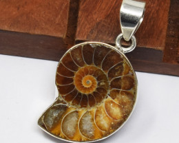 Stunning Genuine Ammonite Pendant In Silver