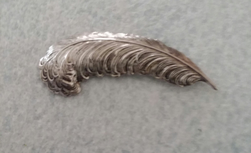 SILVER FEATHER / PLUME VINTAGE PIN BROOCH 1950'S CIRCA PIN