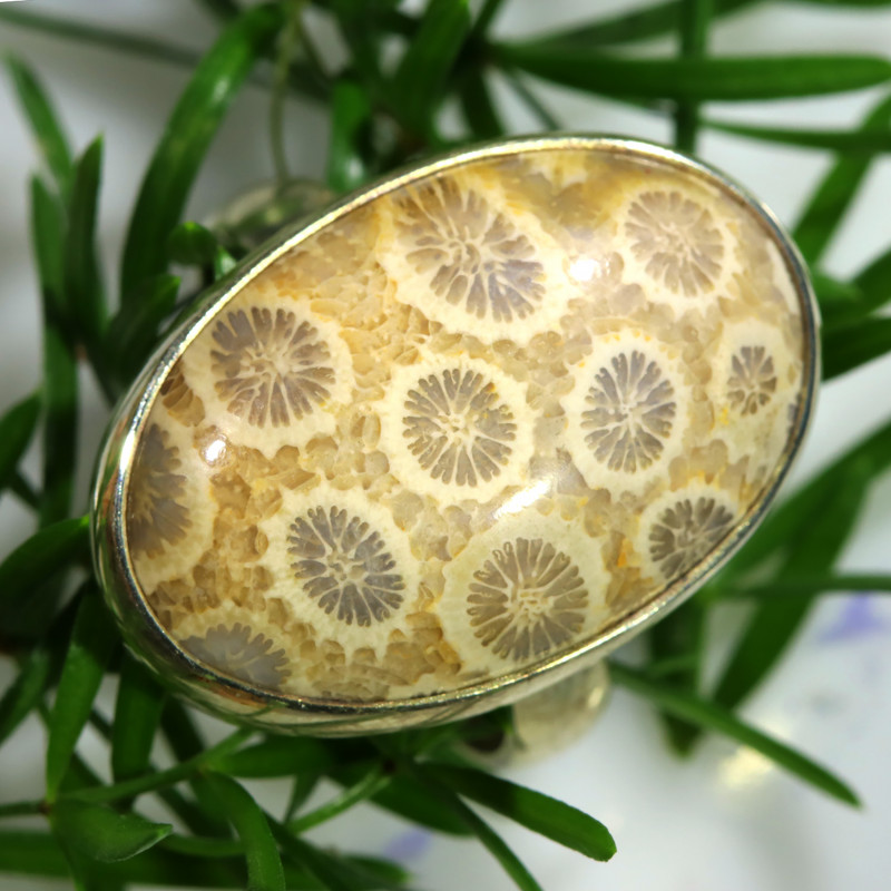 45.45 CTS LARGE CORAL FOSSIL RING-TOP PATTERN SIZE 8.5 [SJ1577]