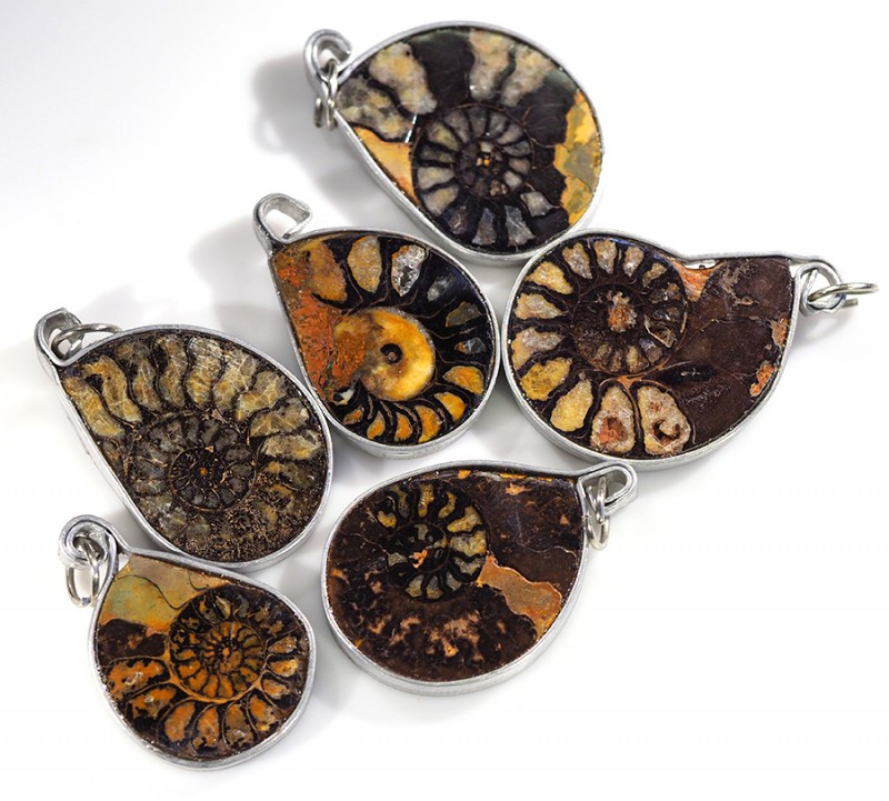Ammonite Pendant parcel 6 pcs from Morocco WS347
