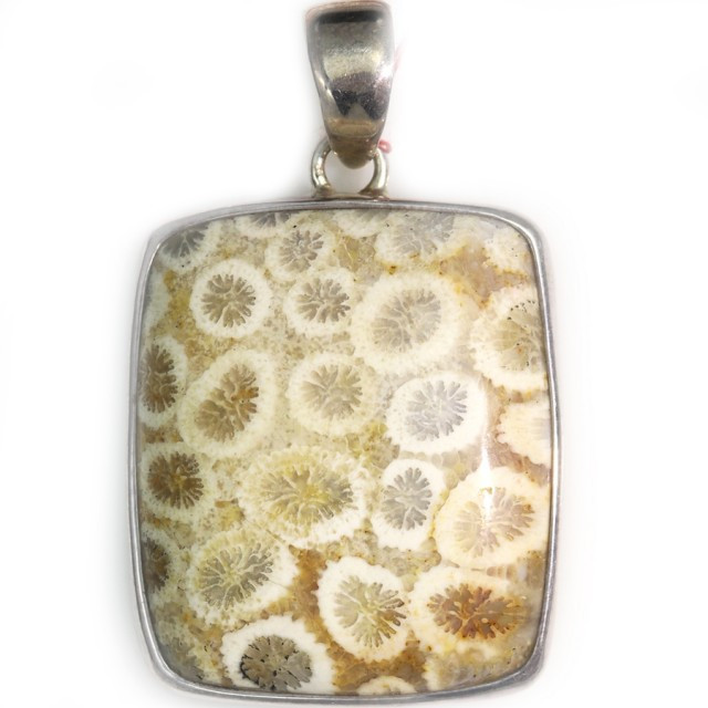 66.45 CTS CORAL FOSSIL PENDANT-INDONESIA [SJ4739]